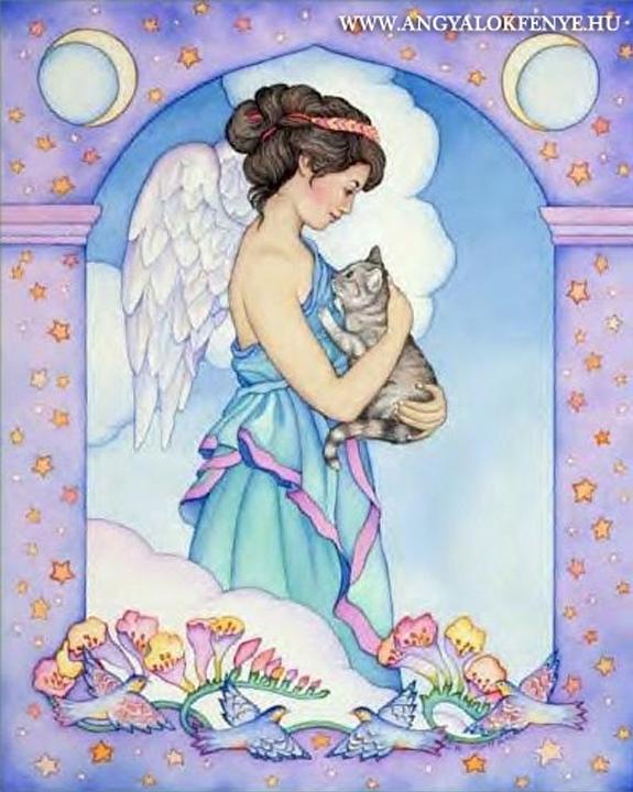 Angyali imák - Állatokért