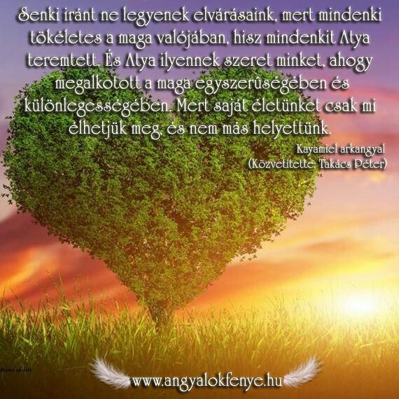 Kayamiel arkangyal-Elvárások