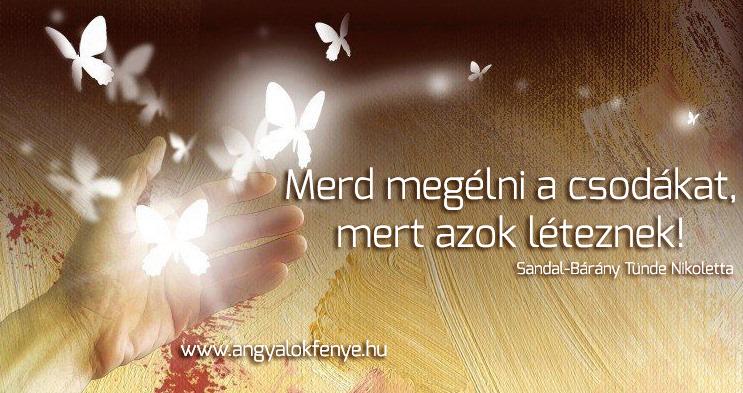 Angyali üzenet-Merd megélni a csodákat