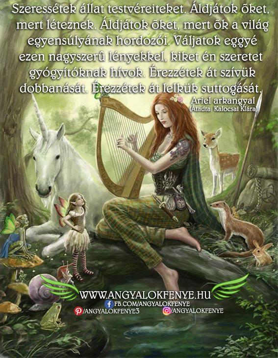Ariel arkangyal: Szeressétek állat testvéreiteket
