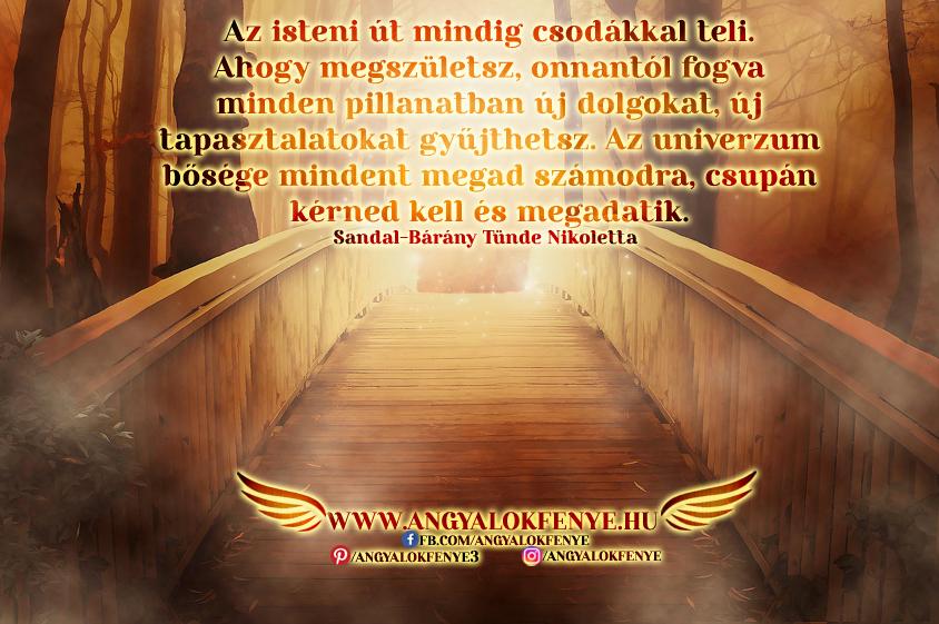 Angyali üzenet-Az isteni út mindig csodákkal teli