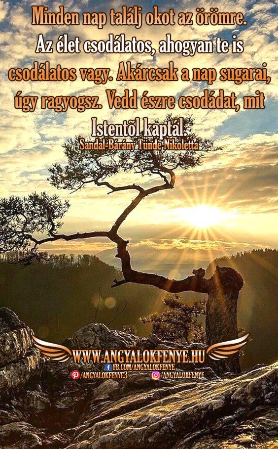 Angyali üzenet-Minden nap találj okot az örömre