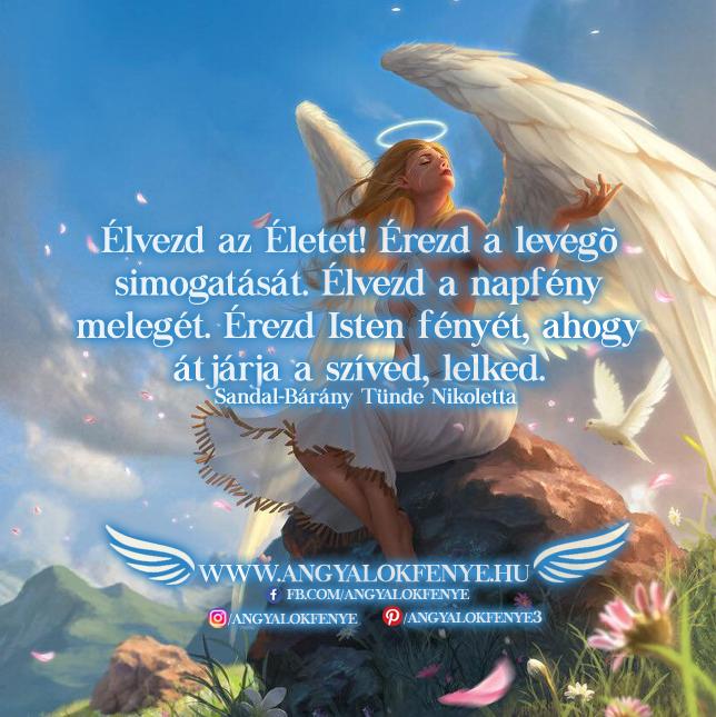 Angyali üzenet-Élvezd az Életet